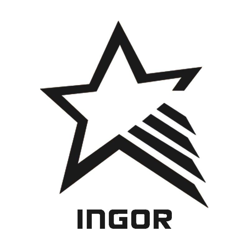INGOR Array image100