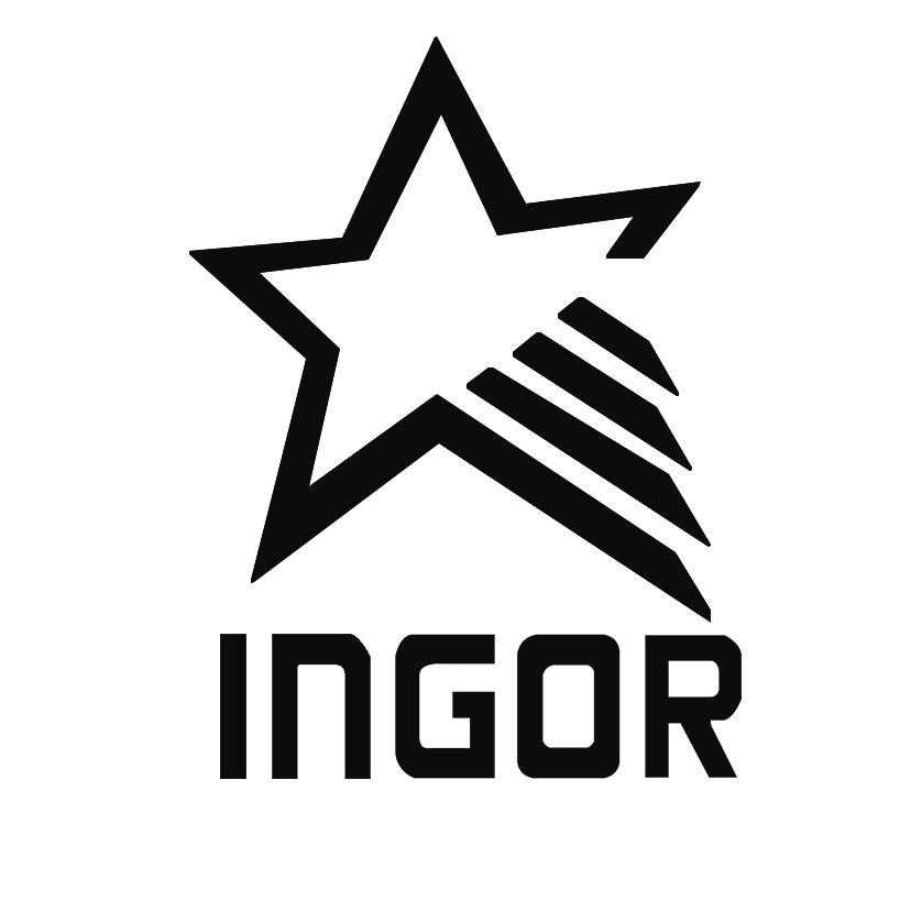 INGOR Array image83